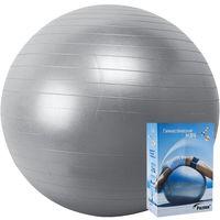 Мяч гимнастический 65 см (серебристый)
