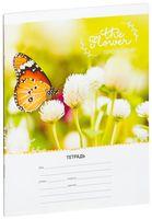"""Тетрадь в клетку """"Tender Flower"""" (18 листов; в ассортименте)"""