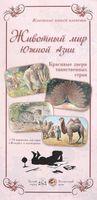 Животный мир Южной Азии. Красивые звери